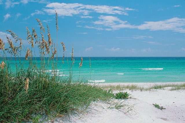 Destin Cab Service to from Airports VPS Valpariaso Fort Walton Beach ECP Panama City Beach to 30A, Sandestin, Seaside, Watercolor Florida